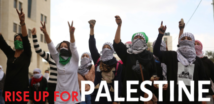 cropped-rise-up-palestine.png